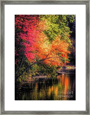 Foliage Over Forge Pond Framed Print