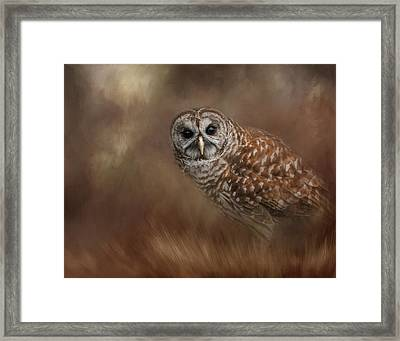 Foraging In The Field Framed Print