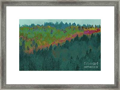 Forest And Valley Framed Print