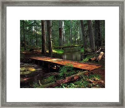 Forest Foot Bridge Framed Print by Leland D Howard