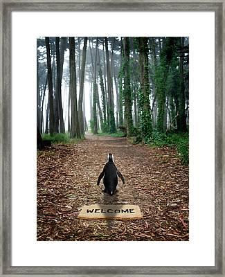 Forest Penguin Framed Print by Richard Newstead