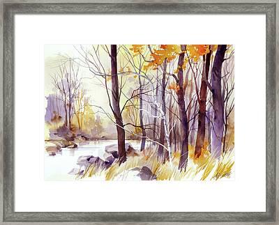 Forest Pond Framed Print by Art Scholz