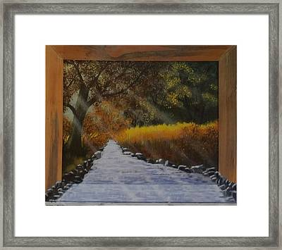 Forest Sunrays Over Water Framed Print