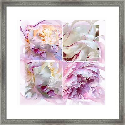 Four Peonies  Framed Print