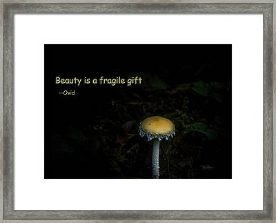 Framed Print featuring the photograph Fragile Mushroom by Bill Posner