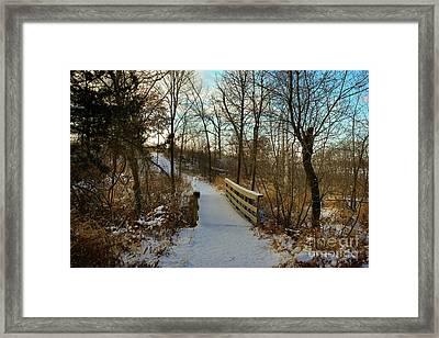 Frigid Landscape Framed Print
