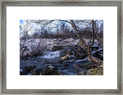 Frozen Tree In Winter River Framed Print