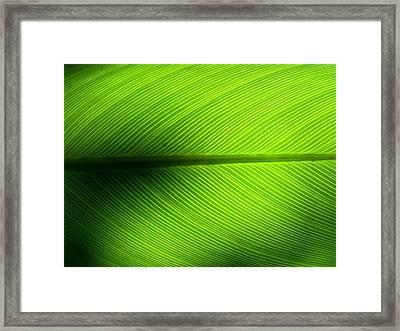 Full Frame Shot Of Green Leaf Framed Print by Kiyoshi Nasu / Eyeem