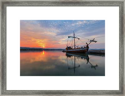 Framed Print featuring the photograph Gaul by Davor Zerjav