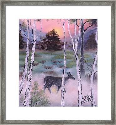 Gentle Mist Framed Print