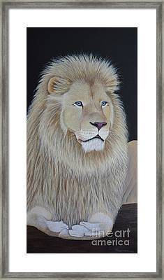 Gentle Paws Framed Print