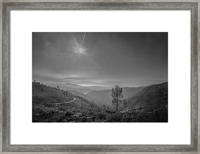 Framed Print featuring the photograph Geres - One Tree by Bruno Rosa