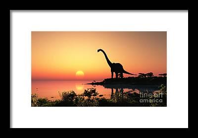 Palaeontology Framed Prints