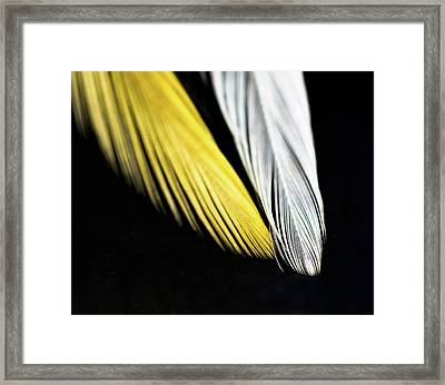 Give Me Wings So I Can Fly Framed Print