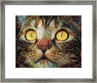 Golden Eyes Dreaming Framed Print