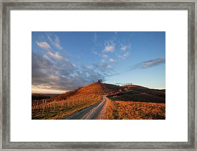 Golden Hill Framed Print