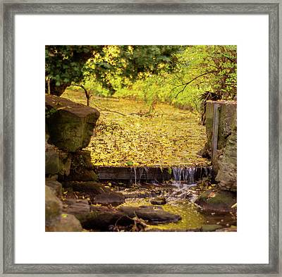 Framed Print featuring the photograph Golden Leaf River by Scott Lyons