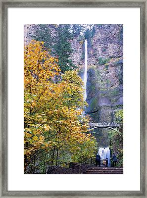 Framed Print featuring the photograph Golden Memories by Rospotte Photography