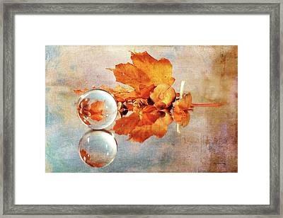 Framed Print featuring the photograph Golden Tones Of Fall by Randi Grace Nilsberg