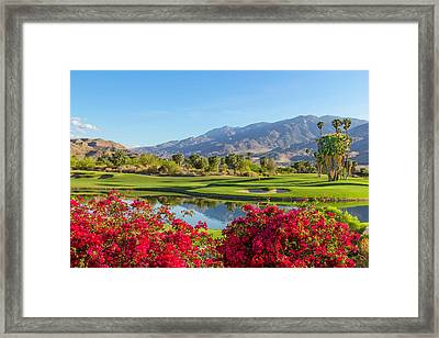 Golf Course In Palm Springs, California Framed Print