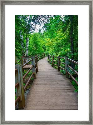 Gooseberry River Trail Framed Print