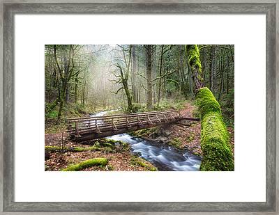 Gorton Creek Framed Print