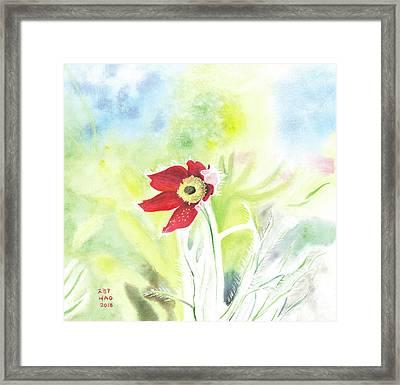 Granny Flower 3 Framed Print