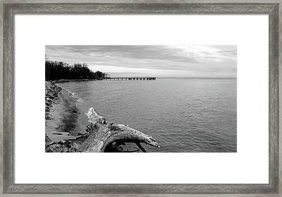 Gray Day On The Bay Framed Print