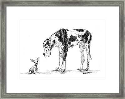 Great Dane 01 Framed Print