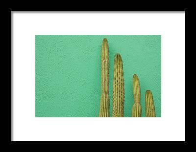 Baja California Peninsula Framed Prints