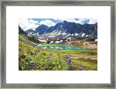 Grizzly Bear Lake Framed Print