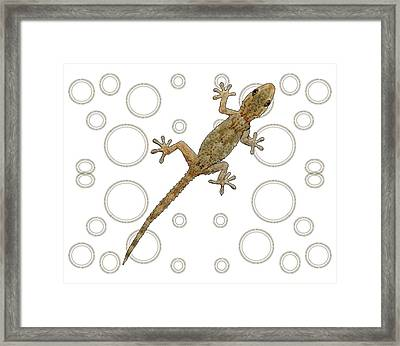 H Is For House Gecko Framed Print