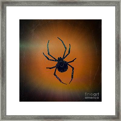 Framed Print featuring the mixed media Halloween Spider  by Rachel Hannah