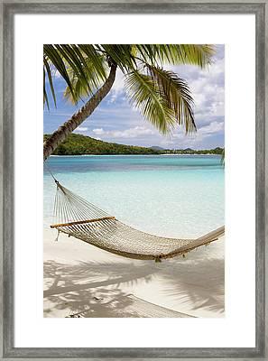Hammock Hung On Palm Trees On A Framed Print