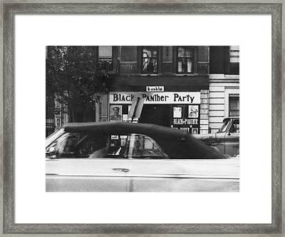 Harlem Panther Hq Framed Print by Frederic Lewis