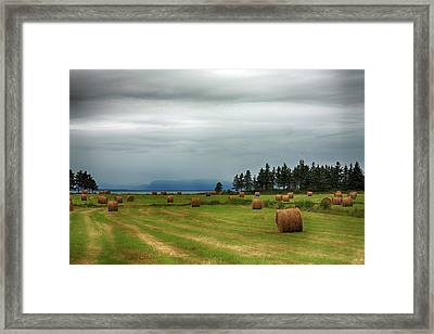 Framed Print featuring the photograph Harvest Time In Canada by Tatiana Travelways