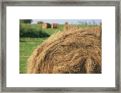 Framed Print featuring the photograph Hay Bail Closeup by Tatiana Travelways