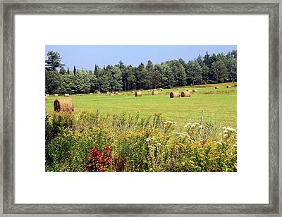 Framed Print featuring the photograph Hay Bails And Wild Flowers by Tatiana Travelways