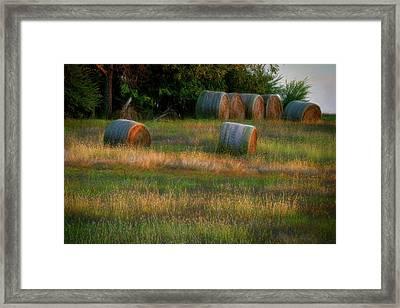 Hay Bales Framed Print