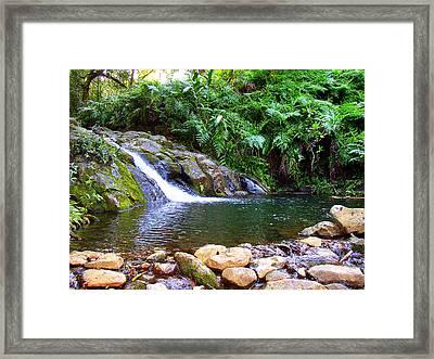 Healing Pool - Maui Hawaii Framed Print