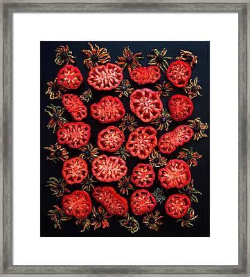 Heirloom Tomato Grid Framed Print
