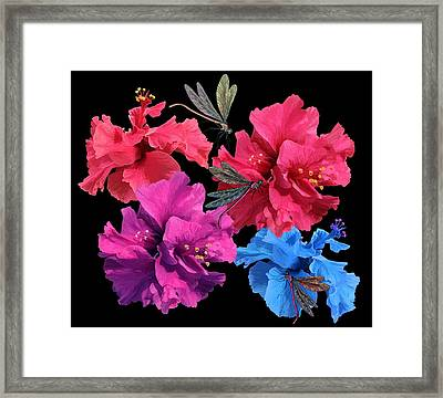 Hibiscus Dragonfly Framed Print