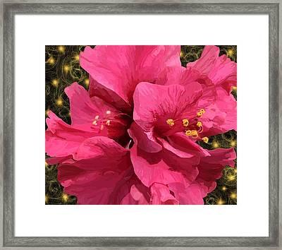 Hibiscus Pollen Framed Print