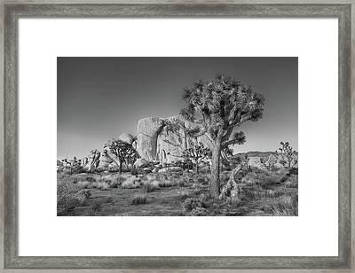 Hidden Valley Rock Framed Print