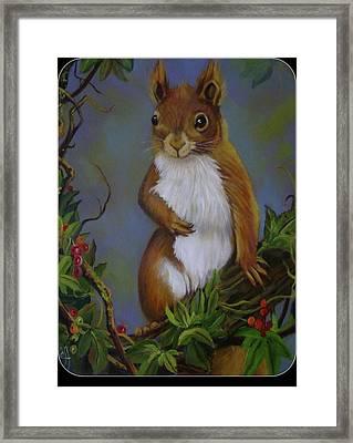 Highland Squirrel Framed Print by Janet Silkoff