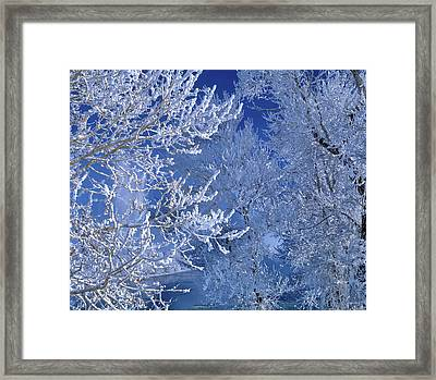 Framed Print featuring the photograph Hoarfrost by Leland D Howard