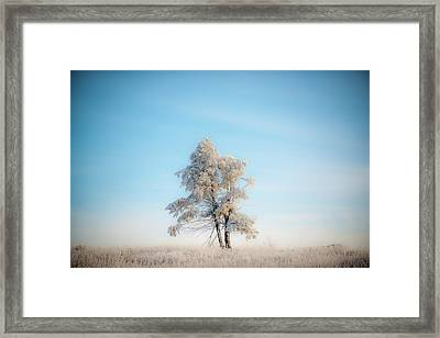 Framed Print featuring the photograph Hoarfrost On The Prairie by Mark Duehmig