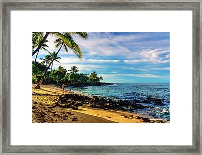 Honl Beach Framed Print