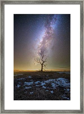 Framed Print featuring the photograph Hopeless He Stays  by Aaron J Groen