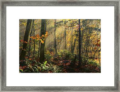 Horizontal Rays Of Sun After A Storm Framed Print